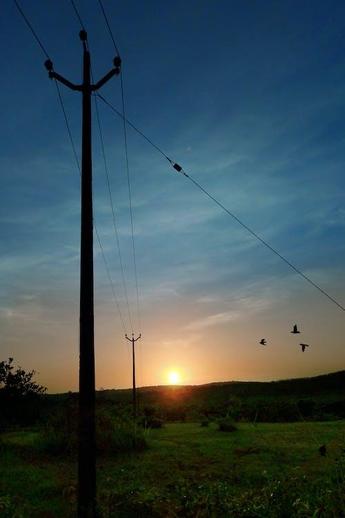 Kostnadsfri bild av elektrisk ström, elledningar, Morgonljus, morgonsol