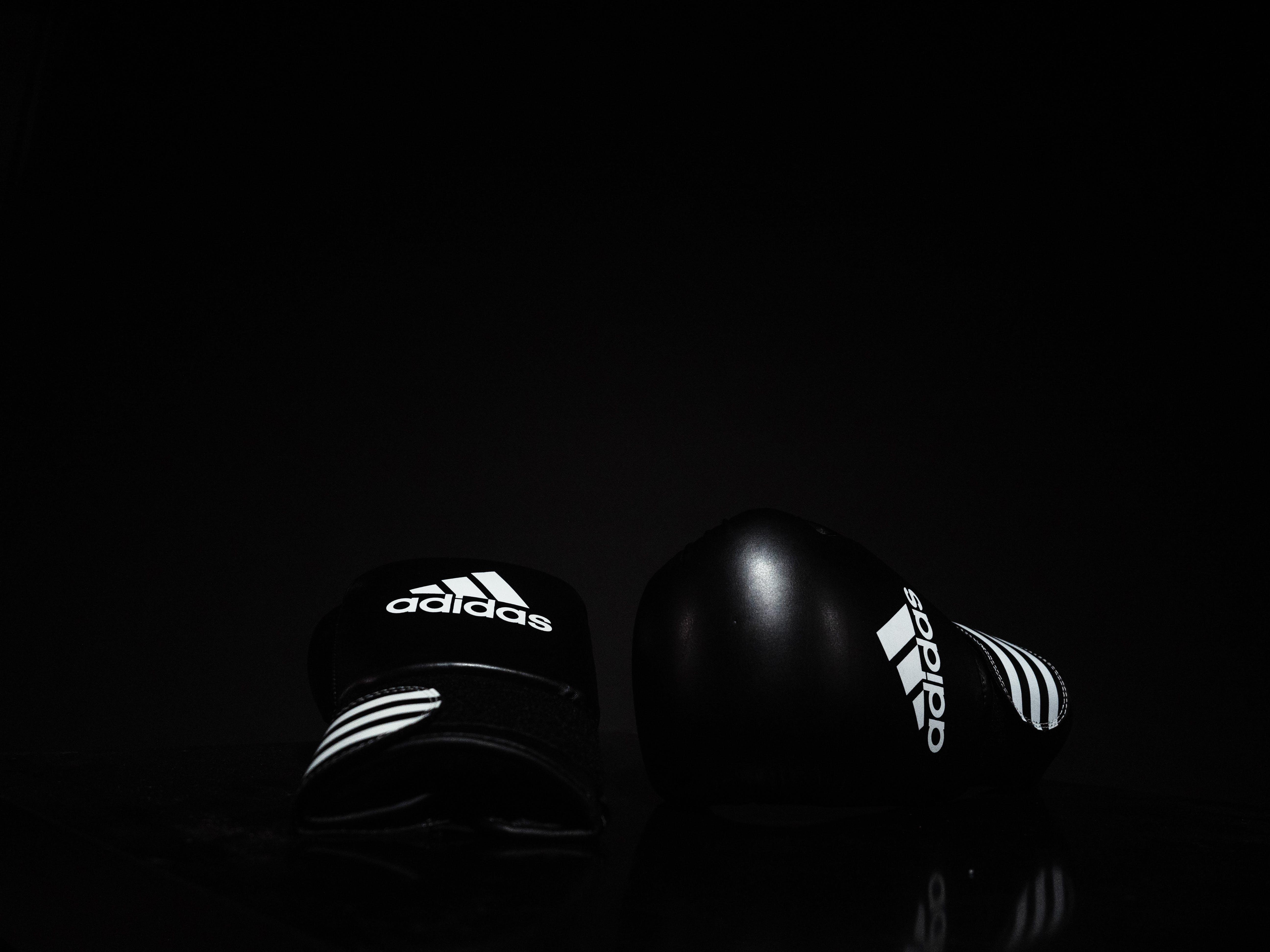 Free stock photo of adidas, background, boxing, boxing gloves
