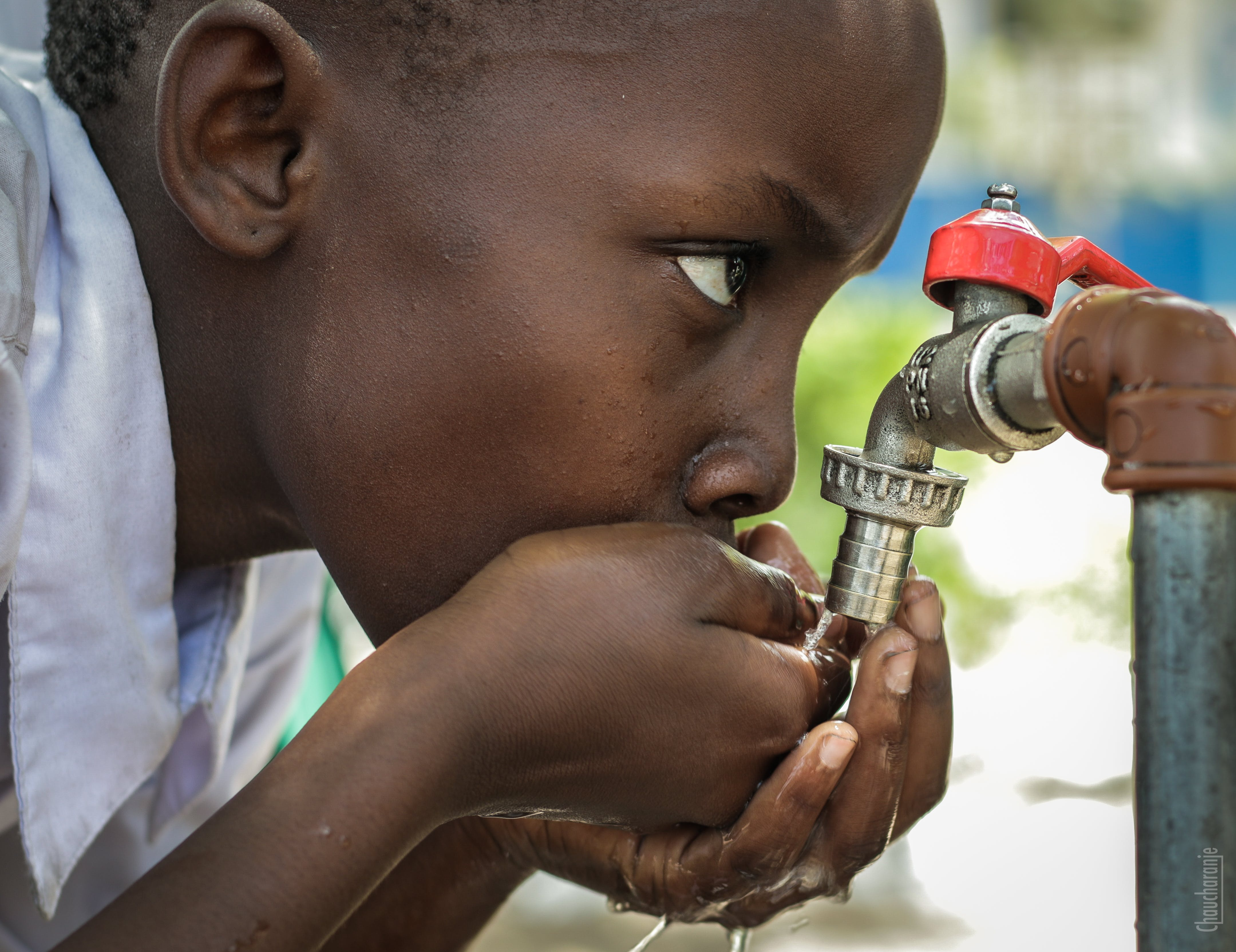 Boy Drinking Water on Faucet