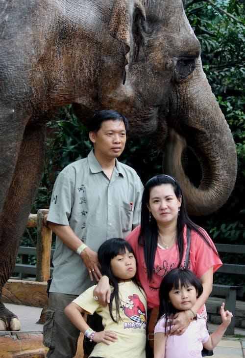 Kostenloses Stock Foto zu glückliche familie, kinder, menschen