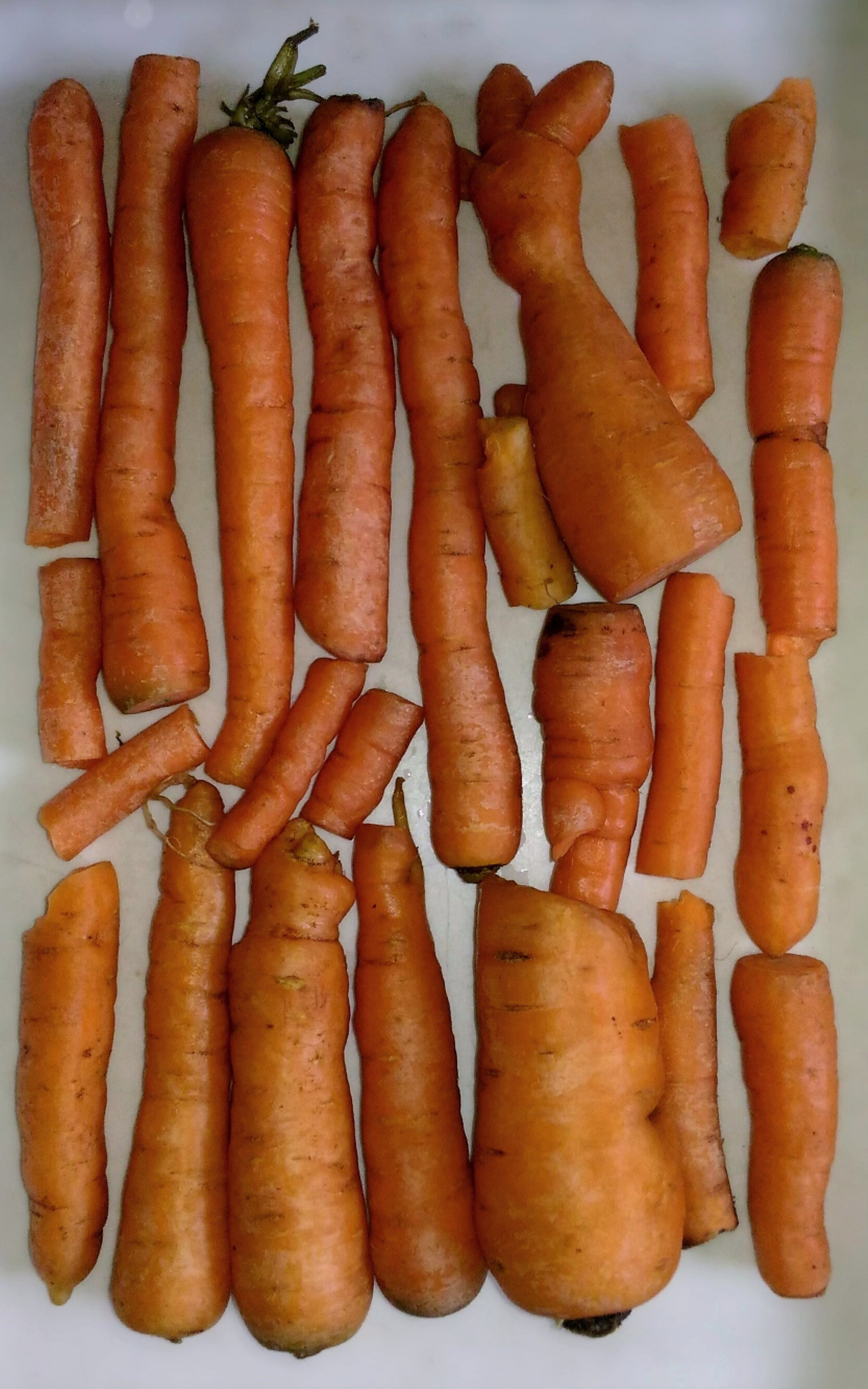 Free stock photo of carrot, carrots