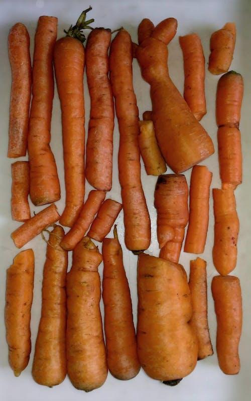 Ảnh lưu trữ miễn phí về cà rốt