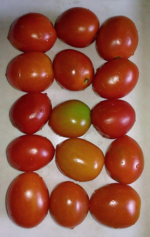 Ảnh lưu trữ miễn phí về cà chua