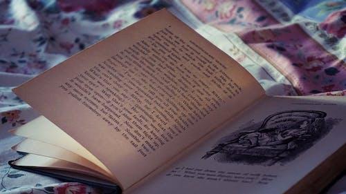 Fotos de stock gratuitas de cama, documento, encuadernaciones de libros, impresión