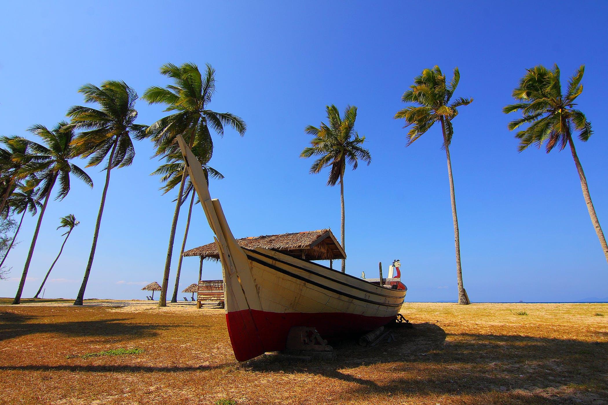 Základová fotografie zdarma na téma kokosový ořech, letovisko, obloha, oceán