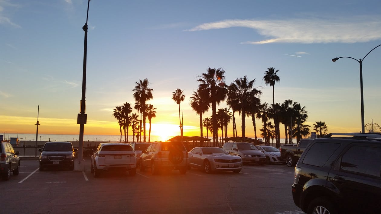 Gratis arkivbilde med palm solnedgang, palmetrær, parkeringsplass