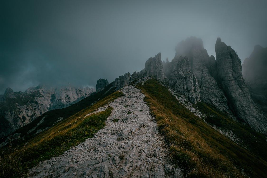 aube, aventure, brouillard