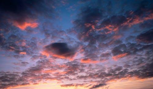 朝の光の無料の写真素材