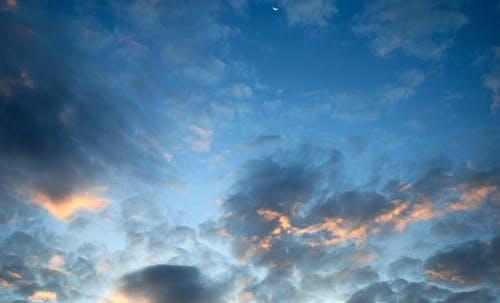 美しい朝, 輝きの無料の写真素材