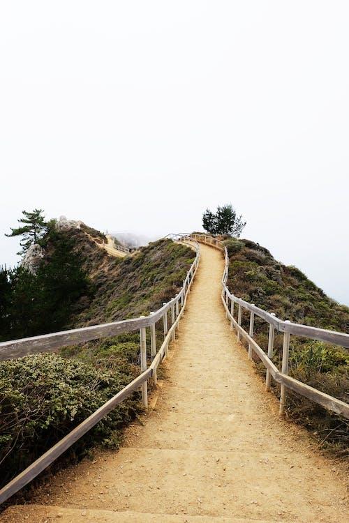 Gratis stockfoto met mist, mistachtig, muir strand over het hoofd gezien, pad