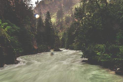Základová fotografie zdarma na téma hluboký, hory, kopec, ledovec