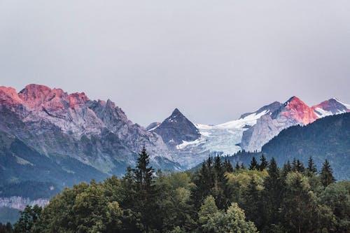 Gratis lagerfoto af bjerge, bjergtoppe, dagslys, forkølelse