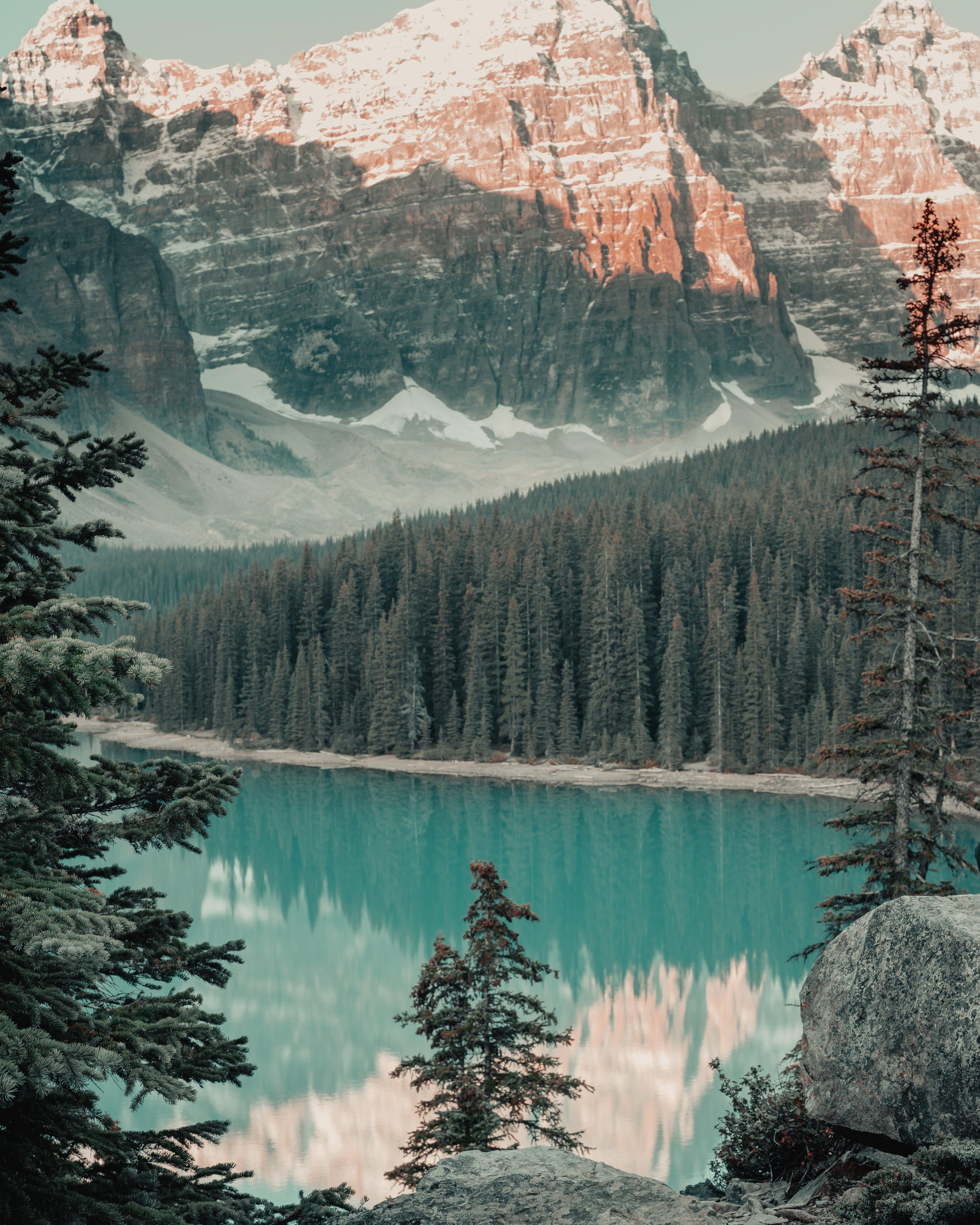 Безкоштовне стокове фото на тему «берег озера, вода, гори, Денне світло»