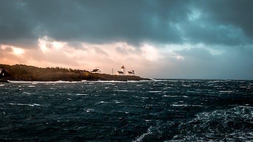 Gratis stockfoto met blikveld, bomen, golven, gouden uur