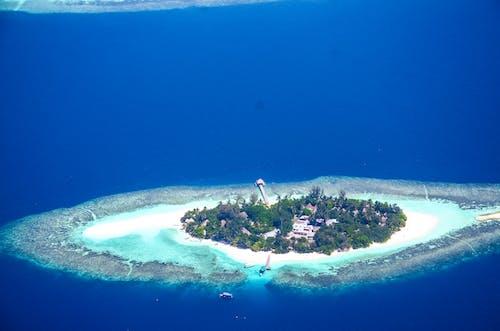 Ingyenes stockfotó atoll, égszínkék, fák, festői témában