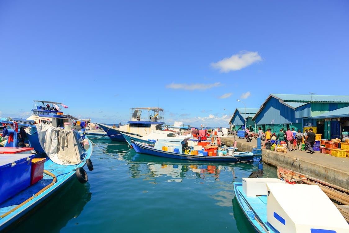 båter, brygge, dagslys
