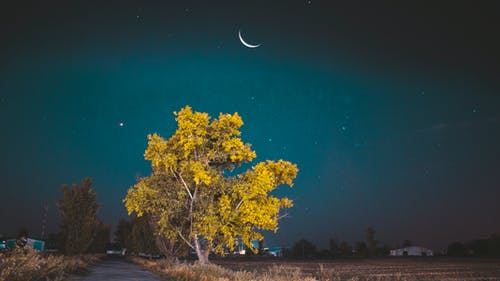 Gratis arkivbilde med astrofotografering, måne