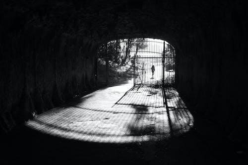 Darmowe zdjęcie z galerii z bary, brama, cień, czarno-biały