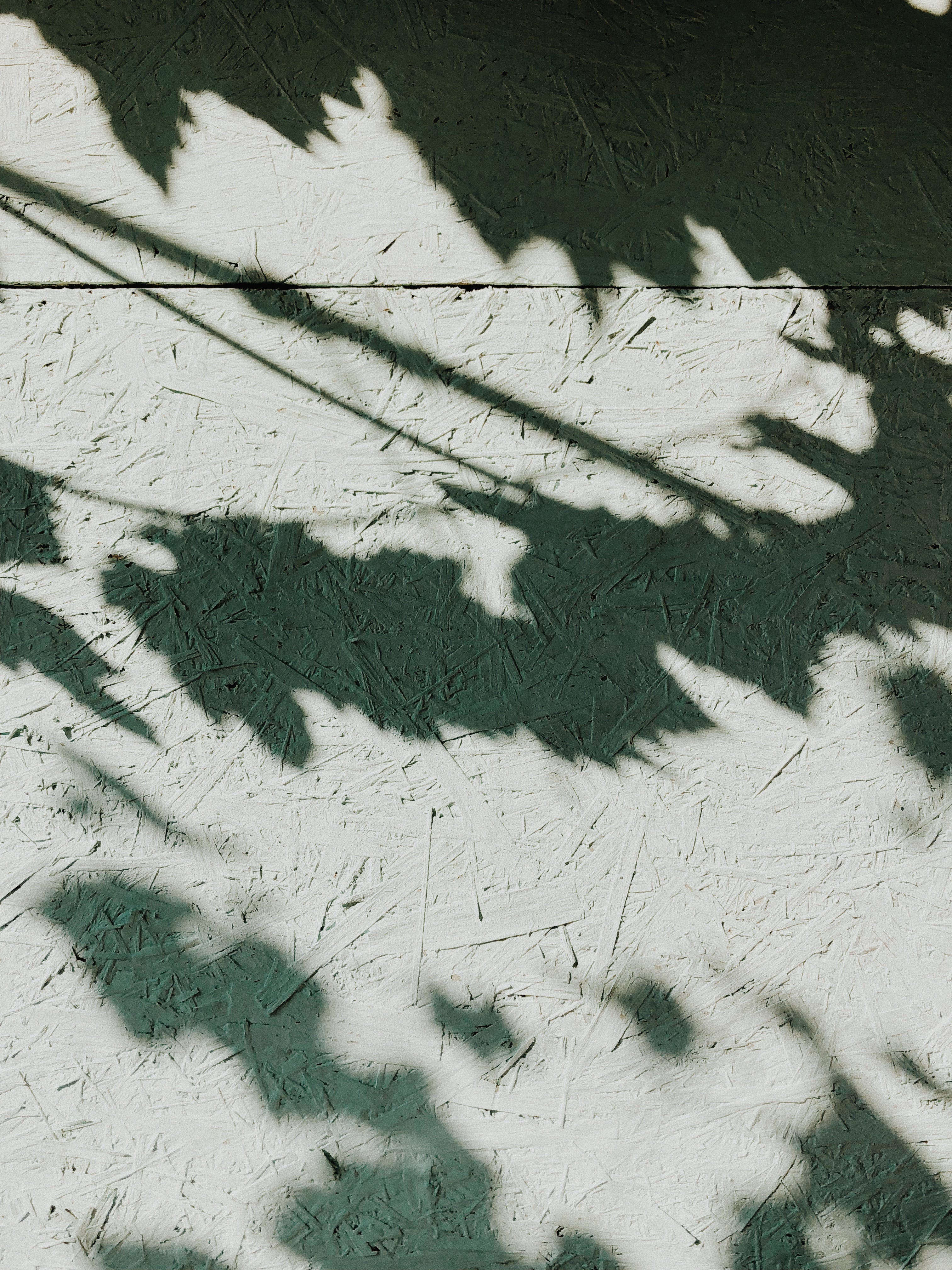 Photo of Shadows on Wall