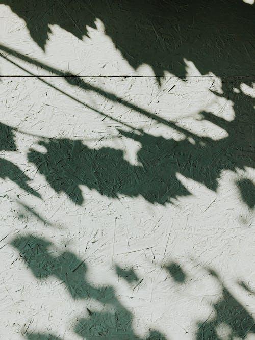 Fotos de stock gratuitas de muro, sombra, superficie, textura