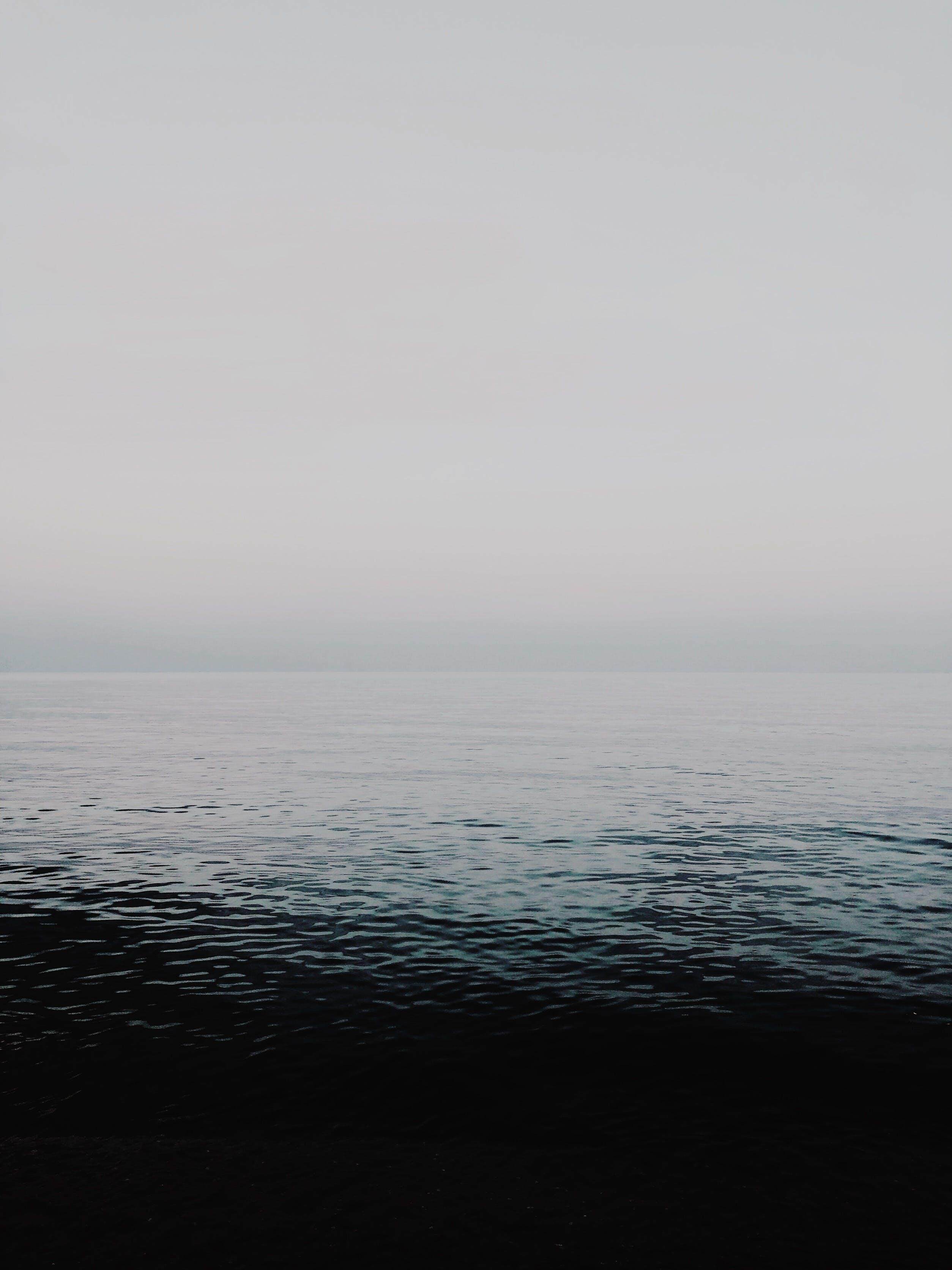 Základová fotografie zdarma na téma čeření, horizont, malebný, mlha