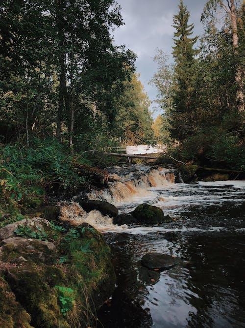 Fotobanka sbezplatnými fotkami na tému denné svetlo, divá príroda, dlhá expozícia, kamene