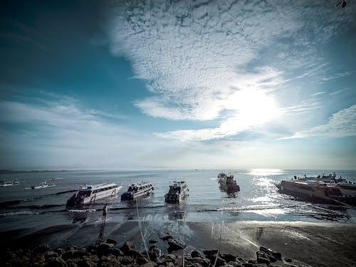インドネシア, オーシャンクルーズ, スピードボート, バリの無料の写真素材