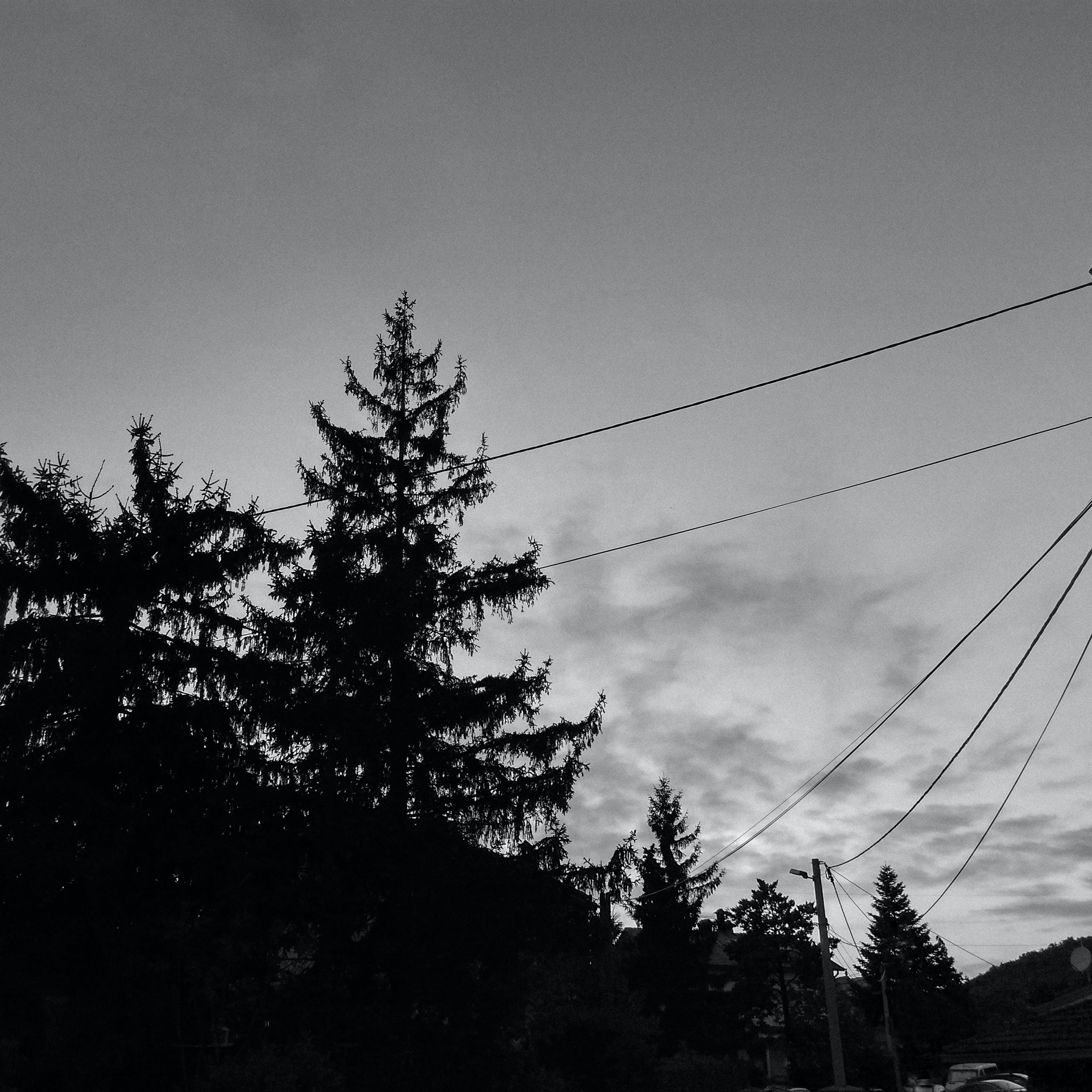 Gratis lagerfoto af bw, minimalistisk, sort og hvid