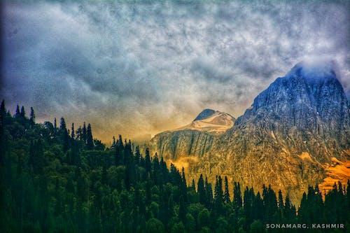 克什米尔, 印度, 喜馬拉雅山, 山 的 免费素材照片