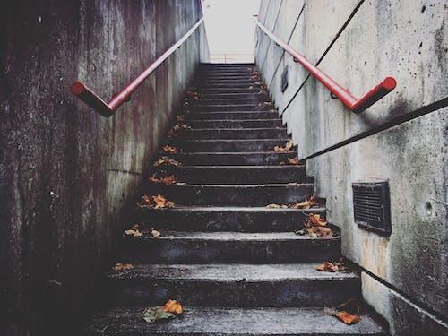 beton, merdivenler içeren Ücretsiz stok fotoğraf
