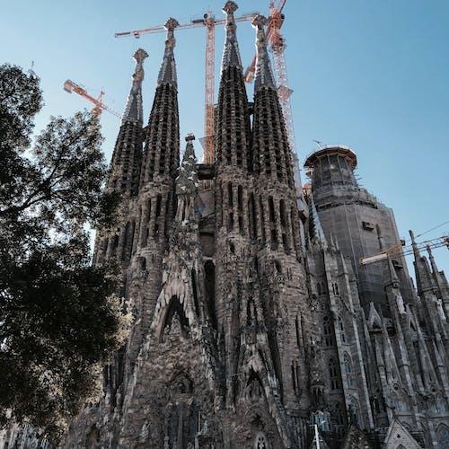 Foto stok gratis barcelona, gaudã, sagrada, sagrada familia