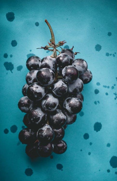 виноград, голубой, пурпурный