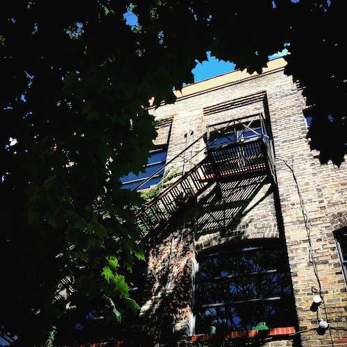 akçaağaç, bina, Mavi gökyüzü, tuğla içeren Ücretsiz stok fotoğraf