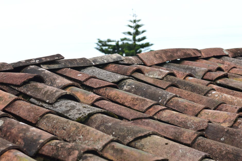 Selective focus photo of brown roof shingles