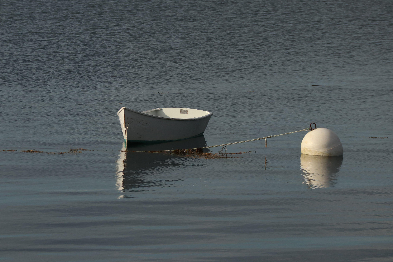 Free stock photo of mooring, rowboat