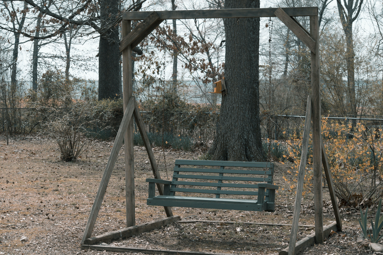 Free stock photo of autmn, fall, loneliness, park
