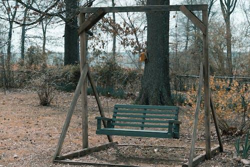 autmn, 公園, 反射, 孤單 的 免费素材照片