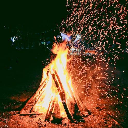大火, 火堆, 火焰, 热辣 的 免费素材照片
