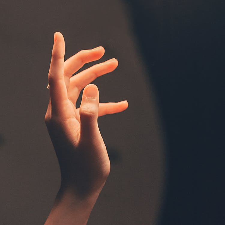 Person's Hand in Shallow Photo