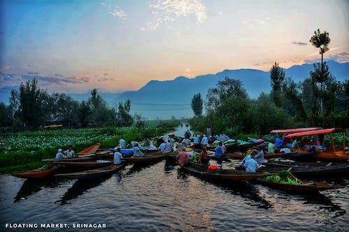 印度, 天性, 景觀, 水上市场 的 免费素材照片