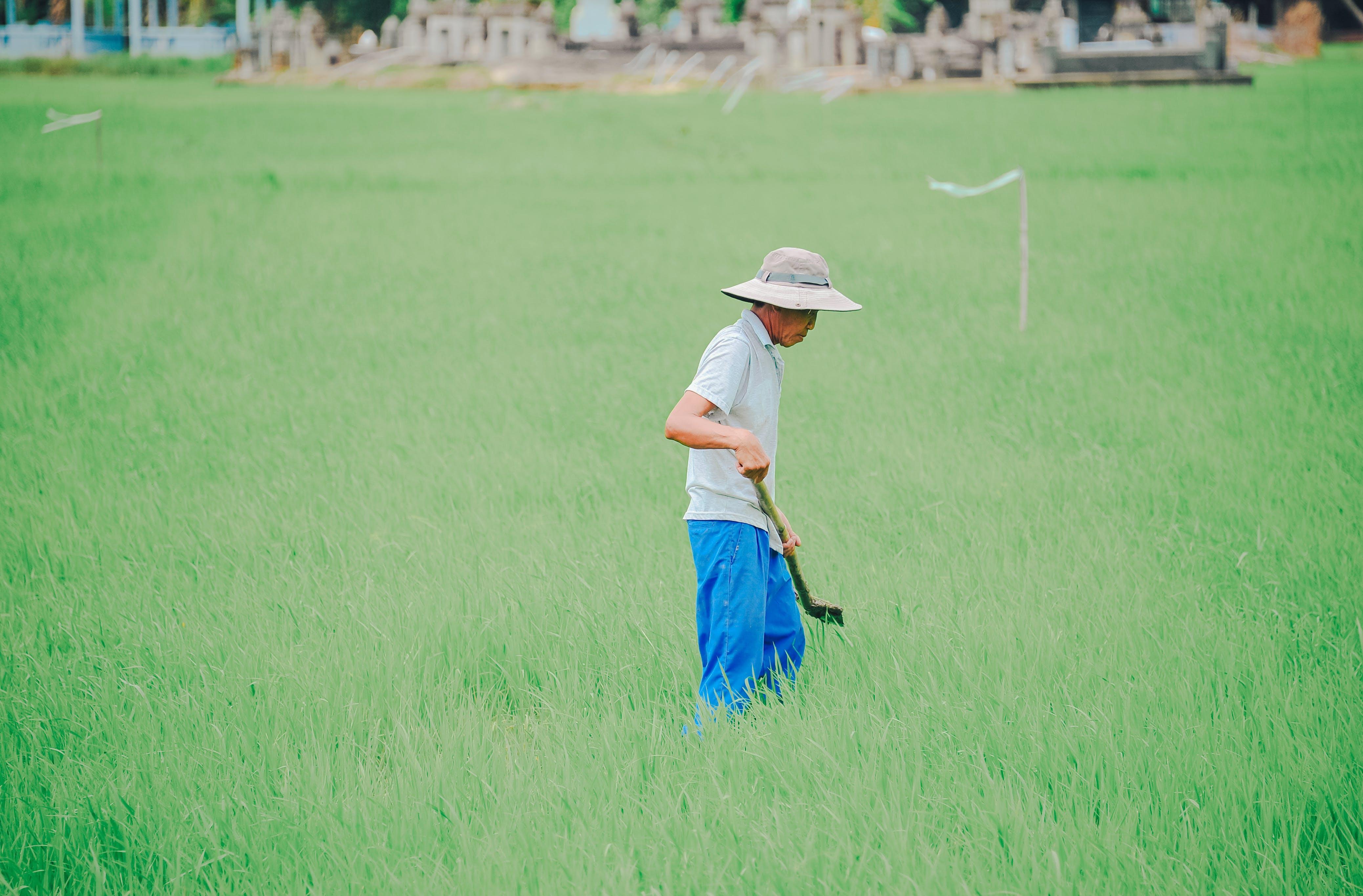 Man At A Grass Field