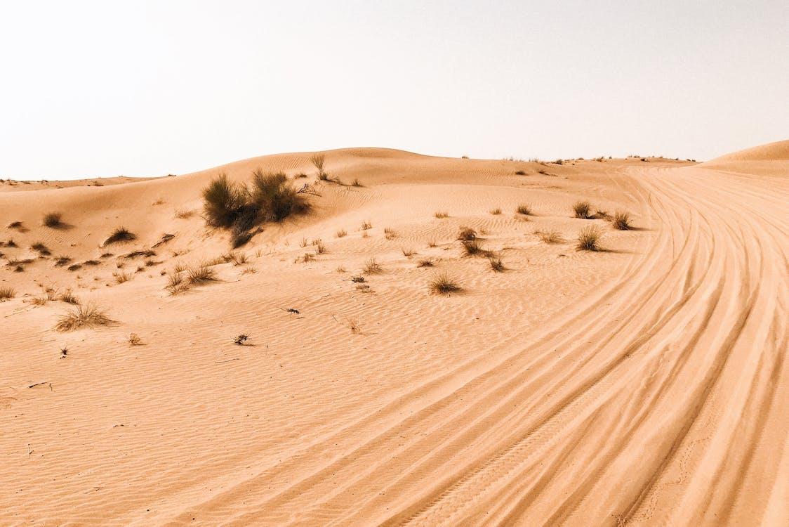 areia, arenoso, árido