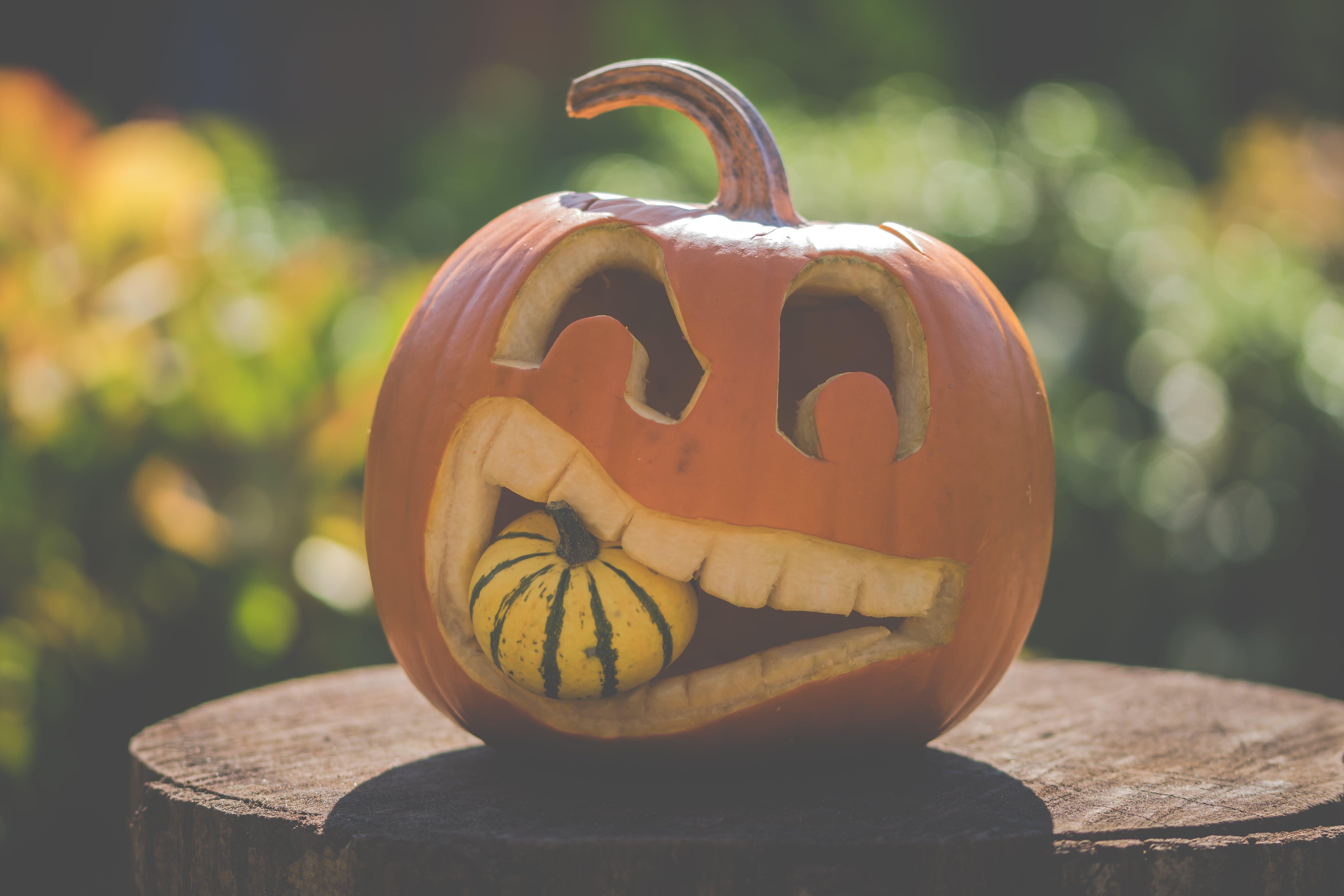 dýně, halloween, říjen