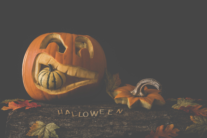 Základová fotografie zdarma na téma děsivý, dýně, halloween, podzimní dekorace