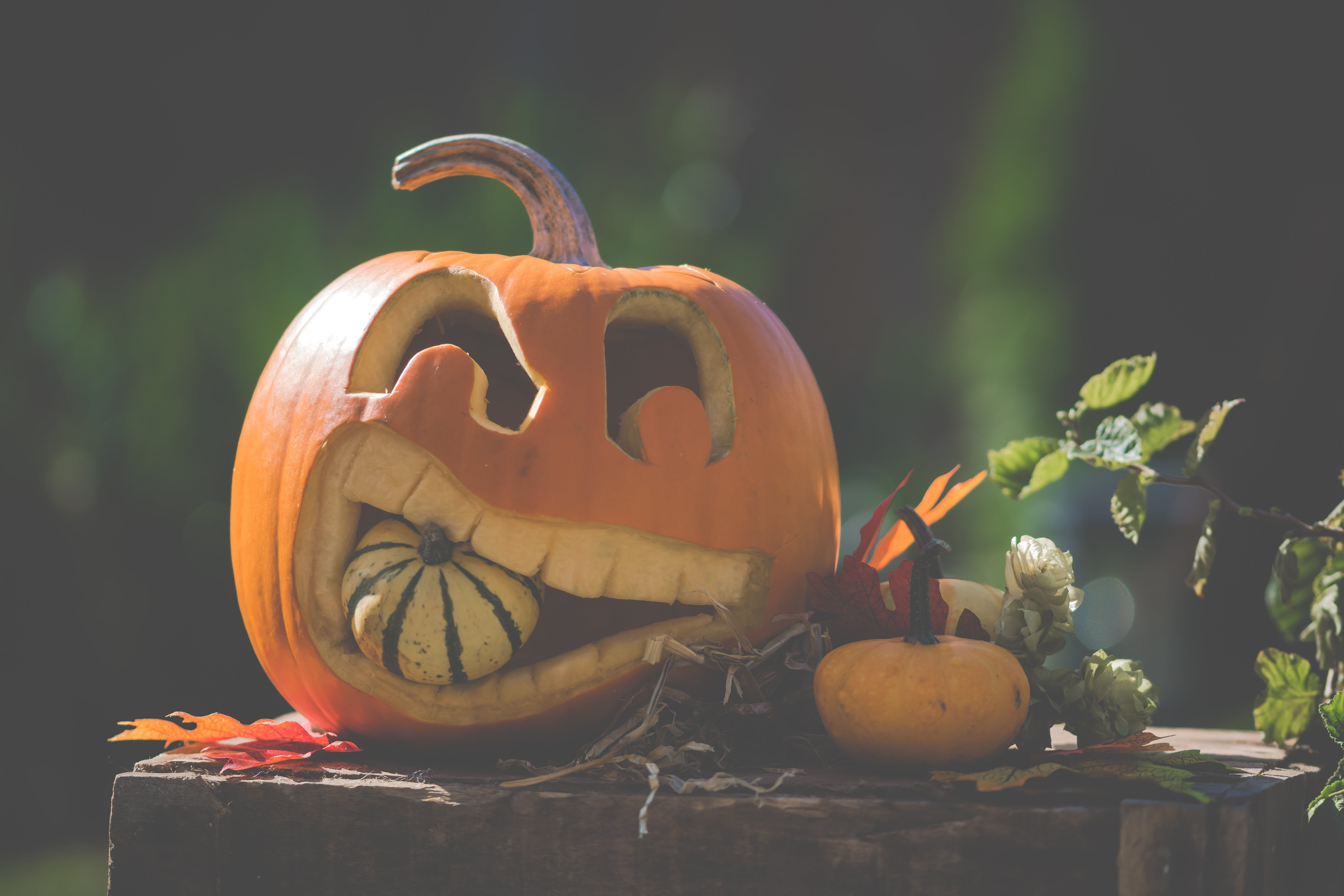 Jack O' Lantern On Top Of Wooden Surface