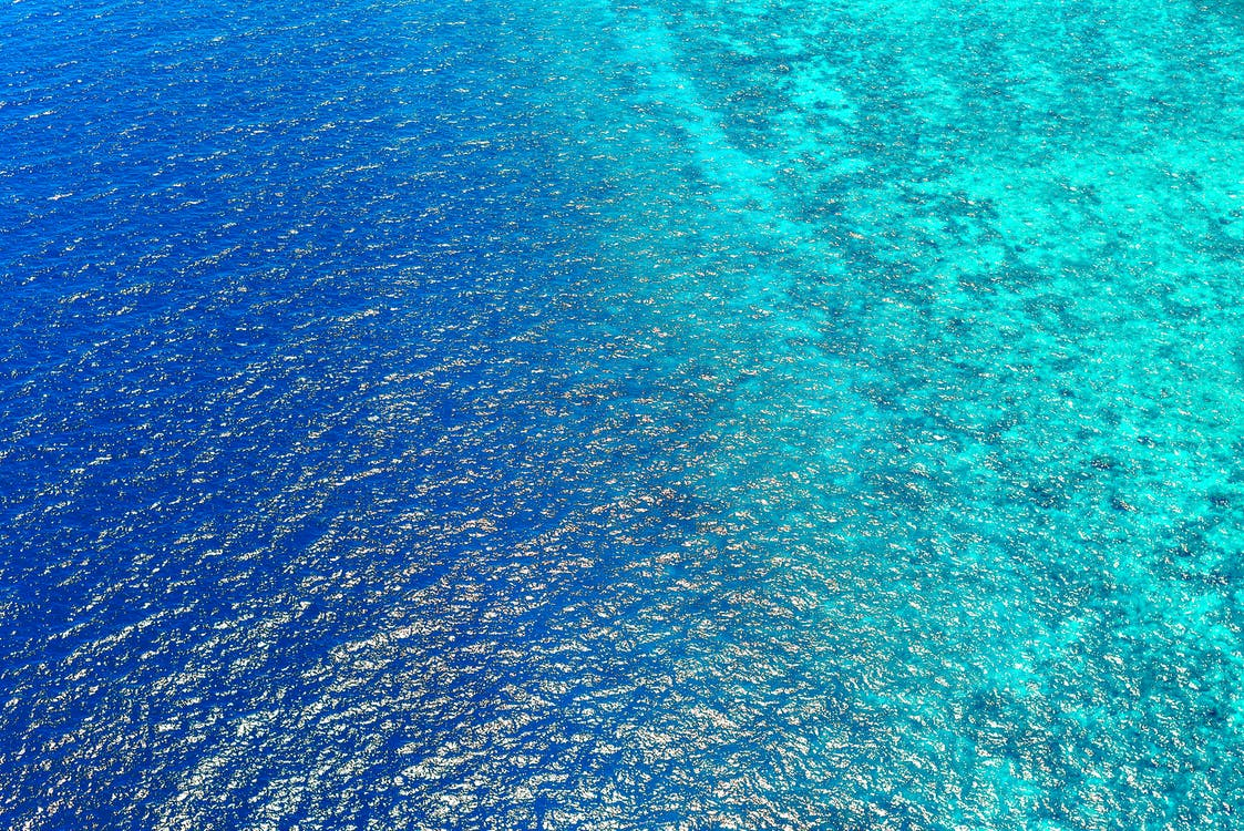 Bird's Eye View of Sea Water