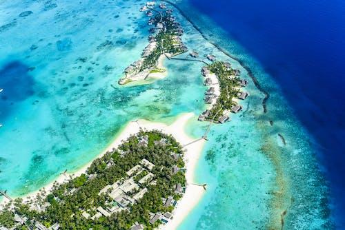 Безкоштовне стокове фото на тему «HD шпалери, берег, берег моря, берег океану»
