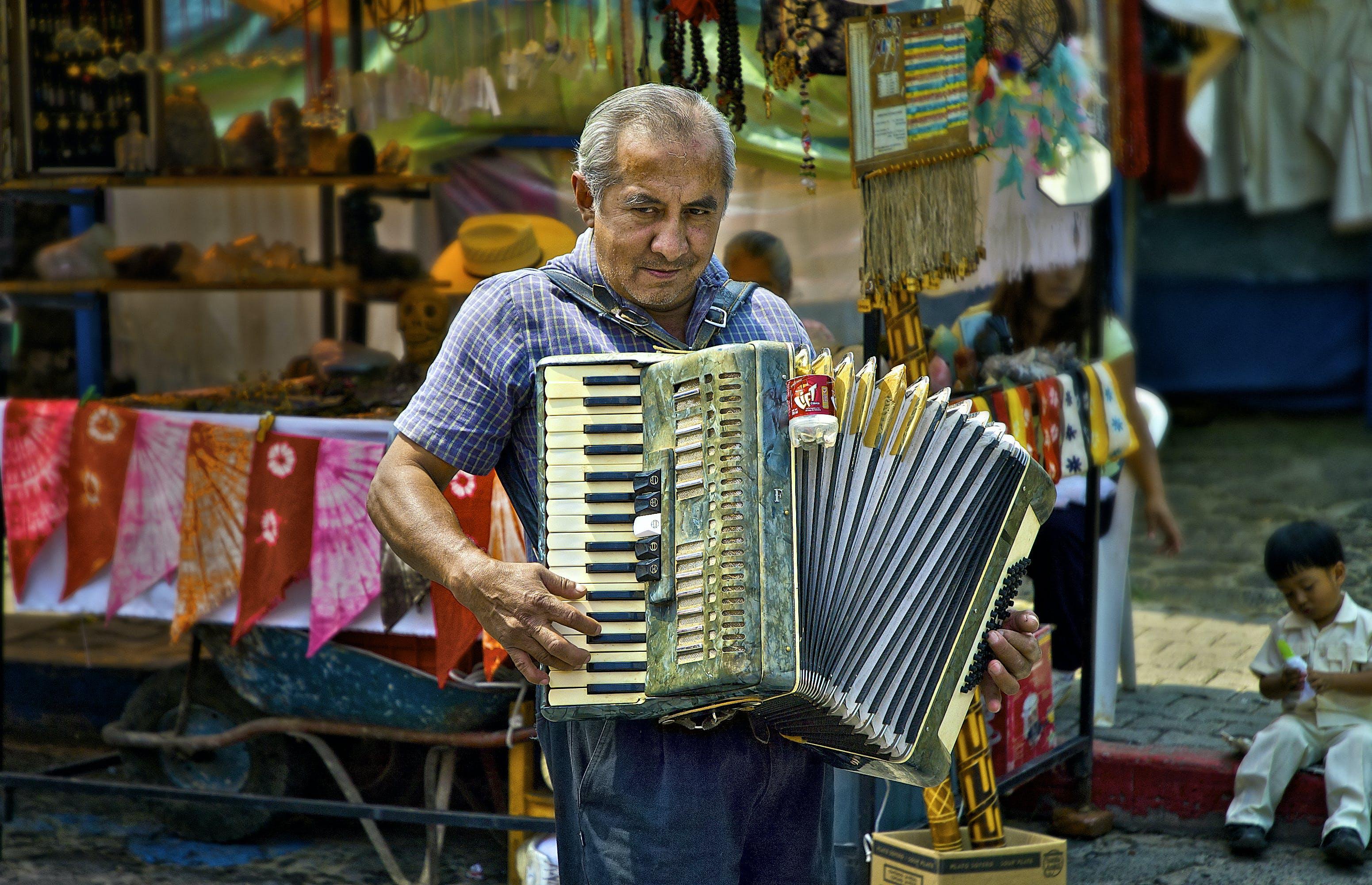 Free stock photo of accordion, musician, street artist