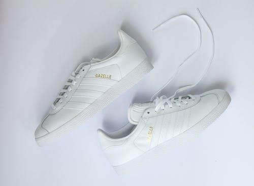Základová fotografie zdarma na téma adidas gazelle, bílé boty, bílé tenisky, gazela