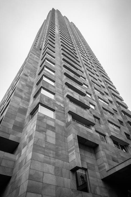 Kostnadsfri bild av arkitektur, Rotterdam, skyskrapor, svartvitt